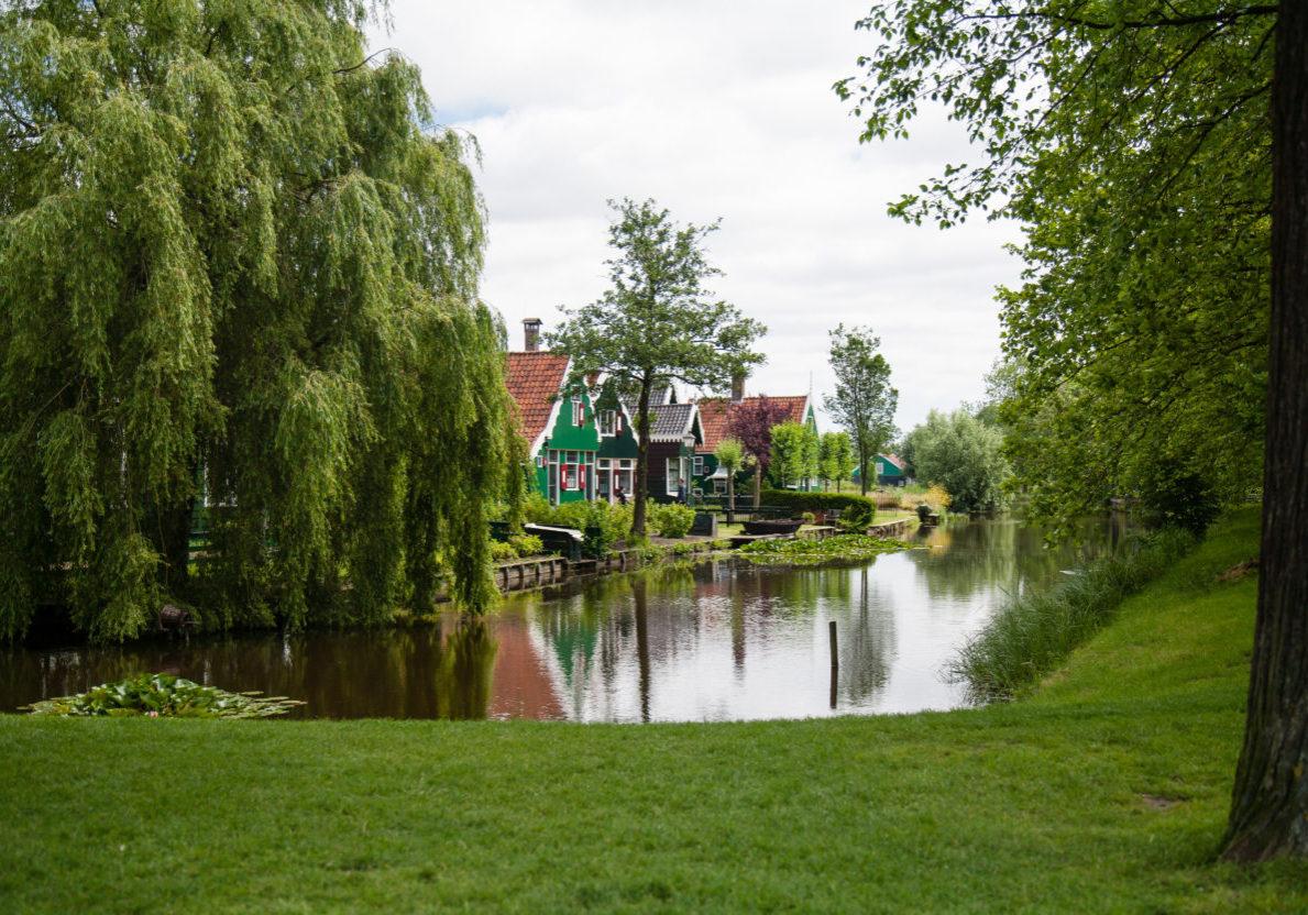 wetlands permit